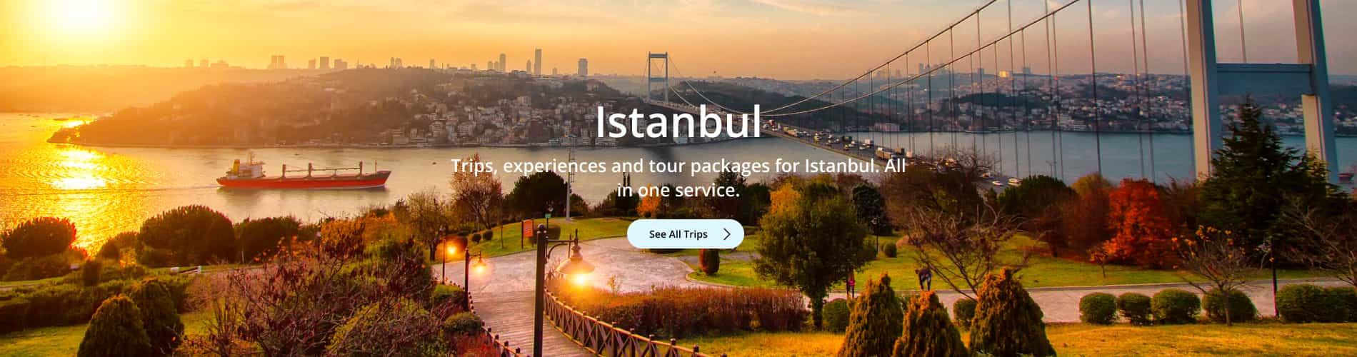 Istanbul Trips